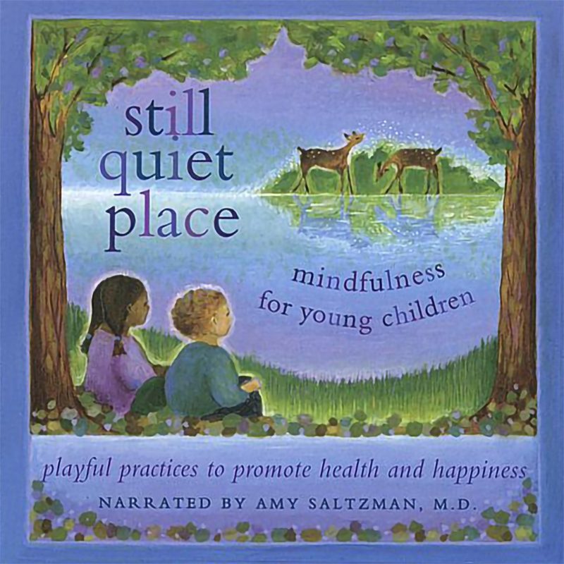 "Cover of ""Still Quiet Place"" by Amy Saltzman, M.D."